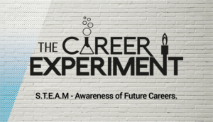 Career Experiment